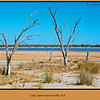 13/366 <br /> Lake Indoon near Eneabba, in Western Australia. We were able to drive all the way round the lake.<br /> <br /> Photographed January 2012 - © Lesley Bray Photography - All Rights Reserved.