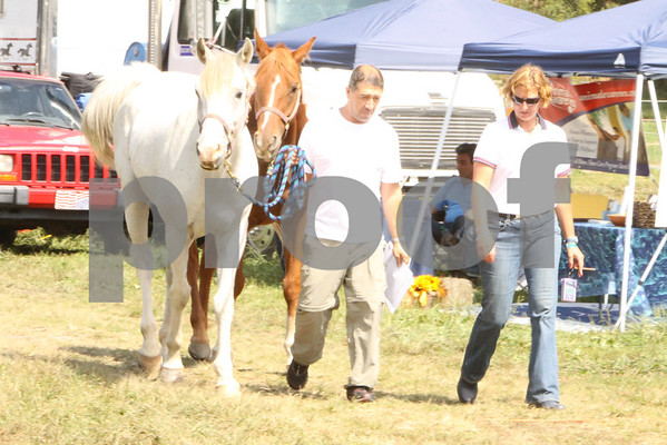 AERC NATIONALS-100-CANDID&AWARDS-2012