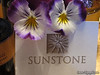 Third Winery:  Sunstone Vineyards and Winery, Santa Ynez