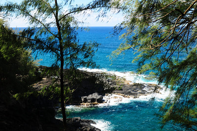 2012_Kauai_Hawaii_August_  0013