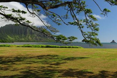 2012_Oahu_August_  0005