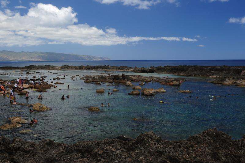 2012_Oahu_August_  0021