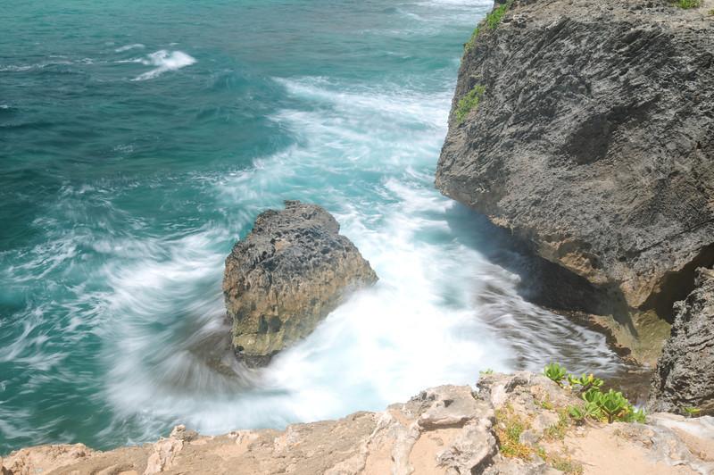 2012_Oahu_August_  0020
