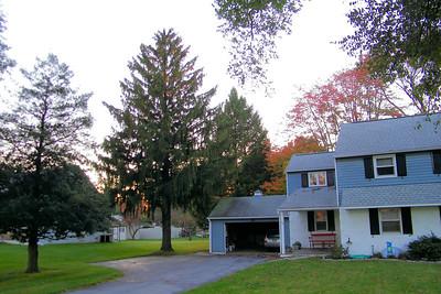 2012 Oct 23rd Tree  Down
