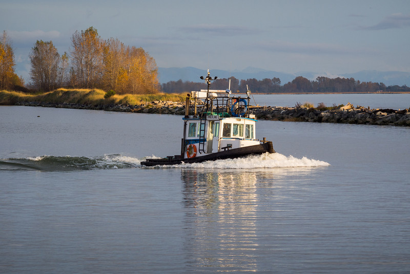 "Tugboat ""Timberland II"" on the Fraser River in Steveston."