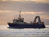 """Fishing vessel """"Viking Enterprise"""" heading up the Fraser River at Steveston."""