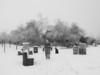 Snow day in Garry Point Park.