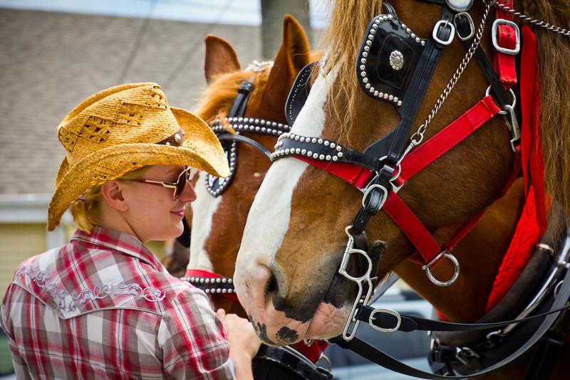 Free horse-drawn carrriage ride in Steveston.