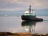 """Tug Boat """"Alison Nicole I"""" on the Fraser River."""