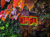 "Neon ""Open"" sign at the Prickly Pear Garden Centre."