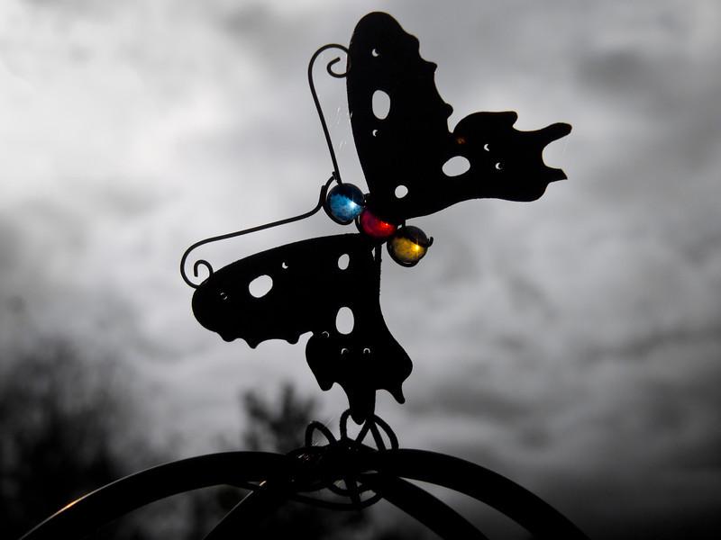 Iron butterfly ornament at Terra Nova Rural Park.