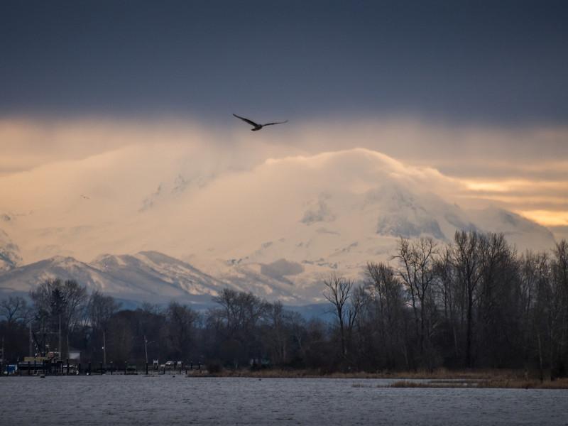 A Mount Baker sunrise as seen from Garry Point Park in Steveston.