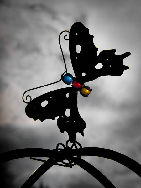 Iron butterfly ornament at Terra Nova Rural Park.