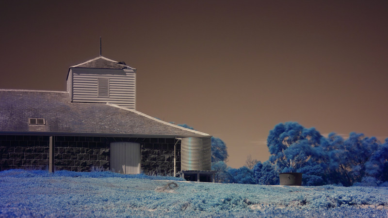 Chirnside Woolshed, at Werribee Open Range Zoo. Here's a quick description of taking and processing an infrared photograph. Infrared is the band of colours that we cannot see just beyond normal red. Before they are placed into cameras, sensors can record the infrared colours. To ensure that we get natural looking photographs, camera makers build an infrared filter into the camera that blocks out most, but not quite all of the infrared colours. If you then attach a filter to the front of your camera that ONLY lets through infrared light, and you take a long exposure, you will end up with a photograph that shows the small amount of infrared light that gets through their IR blocking. <br /> <br /> Your picture then looks very red in colour. But there is a spread of wavelengths in the picture. To make it more interesting to look at you adjust it in a photo editing program. I adjusted the wavelengths so that the bluestone in the Woolshed was mostly black. This left the sky a sepia colour, and it showed that the vegetation is very reflective in infrared wavelengths: the grass is a bit more reflective than the gum trees (which moved in the wind during 20 second exposure). You can also see that there is a bit of vegetation on the roof (lichen, moss?).