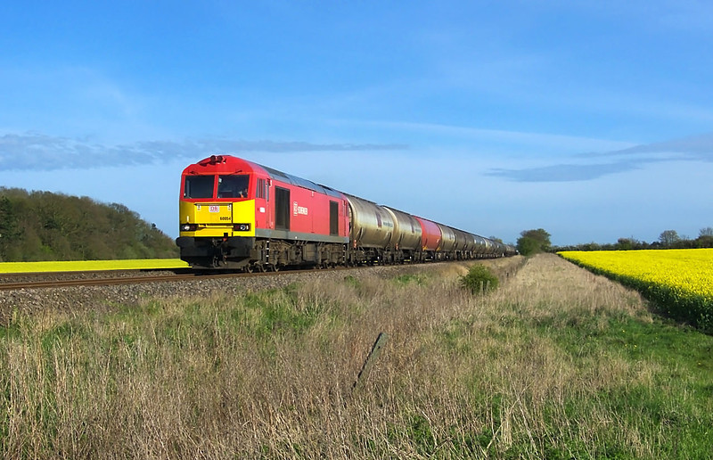 60054 is seen blasting through the feilds fully of Oil Seed Rape whilst in charge of  6E41 the 1004 departure from Westerleigh Oil Terminal to Lindsey Oil Refinery