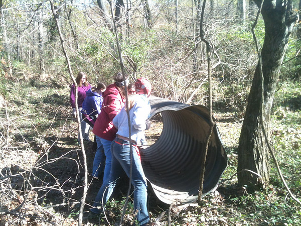 Girl Scouts from Troop 2336 position the parge piece of plastic conduit that's been parked in the woods of Patapsco Valley State Park for at least two years.