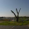 2012-04-02-035 Joplin, Missouri Tornado Damage