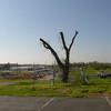 2012-04-02-037 Joplin, Missouri Tornado Damage