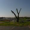 2012-04-02-036 Joplin, Missouri Tornado Damage