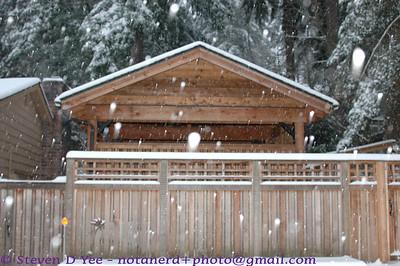 20120119 - snowpocolypse