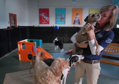 20121031-Canine Club (EB)