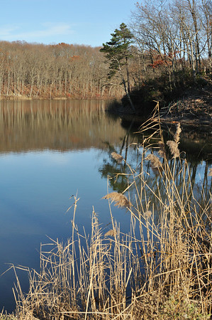 2012_11_23_Cheezquake State Park