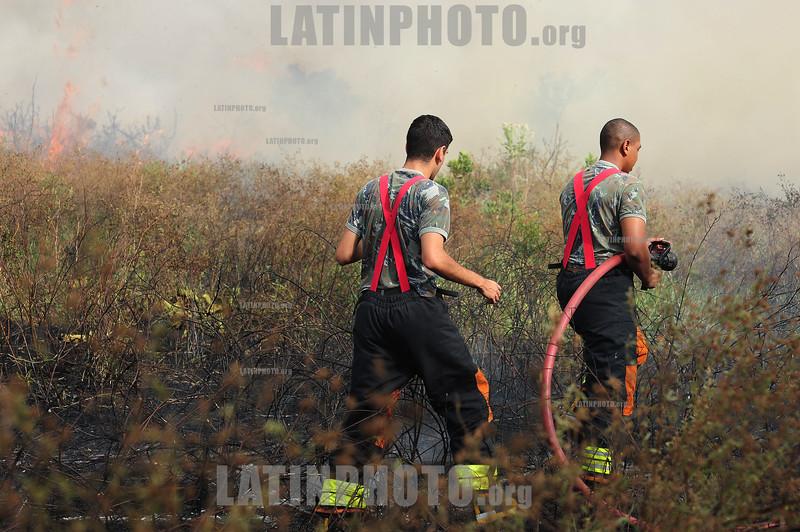 BRASIL 2012-04-10 FOGO - QUEIMADA EM AREA AO LADO DO AEROCLUBE DE SAO JOSE DOS CAMPOS - SP , 3 EQUIPES DO CORPO DE BOMBEIROS DO DCTA E INFRAERO AJUDARAM A CONTROLAR O FOGO NO MATO. / incendios forestales. fuego. / Brasilien: Buschbrand bei Sao Jose dos Campos. © Lucas Lacaz Ruiz/LATINPHOTO.org