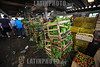 BRASIL 2012-03-30 MOVIMENTO NO CEASA DE SAO JOSE DOS CAMPOS. Mercado Municipal. / Mercado Central. Ensalada. / Market hall Sao Jose dos Campos. / Brasilien: Markthalle in Sao Jose dos Campos. Salat. © Lucas Lacaz Ruiz/LATINPHOTO.org