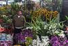 Venezuela : Mercado Municipal de San Martin / San Martin Municipal Market in Caracas / Venezuela : Zentralmarkt in Caracas - Blumen - Markt - Blumenmarkt - Sonnenblumen © Alexander Sánchez/LATINPHOTO.org