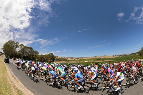 The peloton passes some famous Barossa vignes in solid pursuit of the escape...