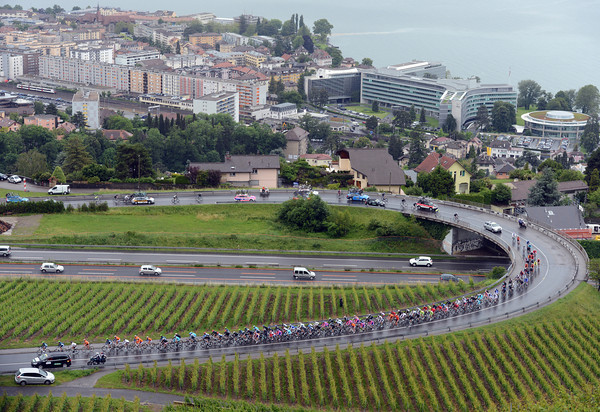 The peloton climbs away from Vevey and the worldwide headquarters of Nestlé and into a vast area of vignes...