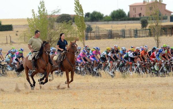 These two horses have little trouble in out-pacing the peloton right now...