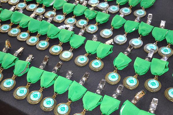 2013-14 Daisy Dozen Troops