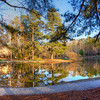 Cary lake at appartments