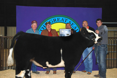 Lane Stewart wins Market Steer Grand Champion