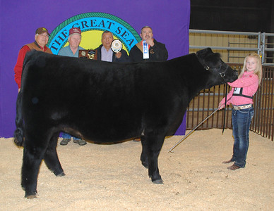 Merideth Behrens wins Heifer Reserve Breed Champion and Third Overall