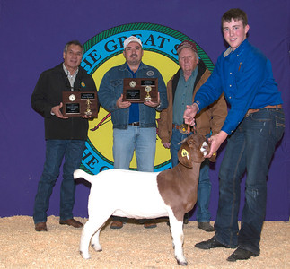 Colton Mize of Springer wins Meat Goat Senior Showman and Meat Goat Division Champion