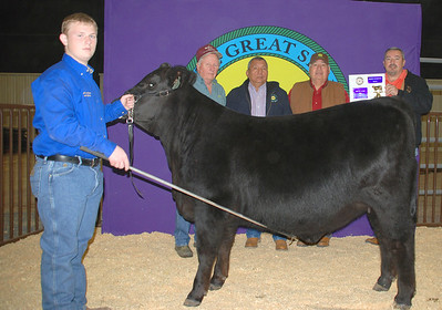 Dustin Cochran wins Heifer Breed Champion