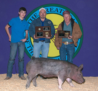 Holden Bell of Madill wins Swine Grand Champion and Cross Breed Champion