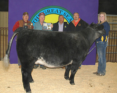 Ashlyn Kellam wins Heifer Reserve Breed Champion and Junior Showmanship Champion