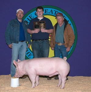 Baylor Jestis of Durant wins Yorkshire Breed Champion