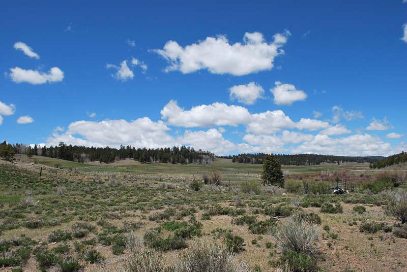 Hwy 64 in New Mexico