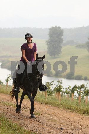Hope for Horses-30-2013