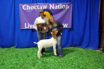 Kelsey Willis of Bristow FFA wins Meat Goat Grand Champion and Division 2 Champion