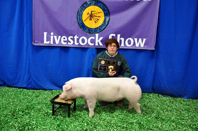 Bryan Hawkins of Jones Academy 4-H wins Chester Breed Champion