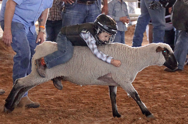 2013 Mutton Busting