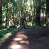 Marsh Creek Trail was a big hit day 1!