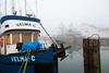 Fishing boats tied up at the Gulf of Georgia Cannery dock in Steveston on a foggy day.