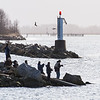 Fishing madness at Garry Point Park.