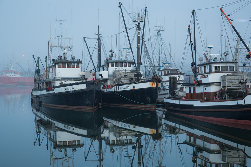 Packers Hesquiat and Kimsquit in the early morning fog at Steveston.